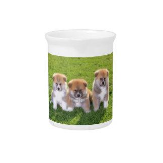 Akita Inu Dog Puppies Pitcher