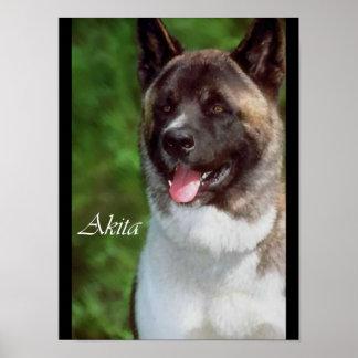 Akita Lovers Posters and Prints