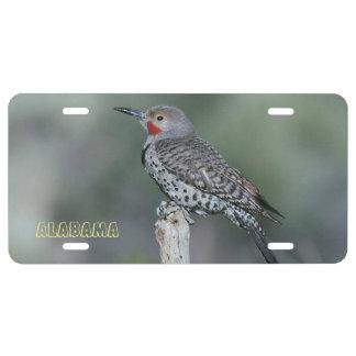 Alabama State Bird - Northern Flicker License Plate