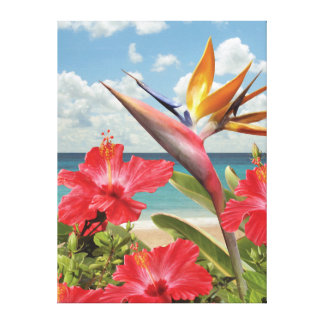 "Alan Giana ""Hibiscus in Paradise"" Canvas Print"