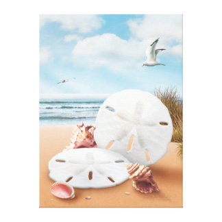 "Alan Giana ""Sand Dollars"" Canvas Print"