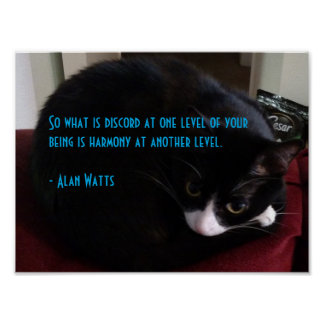 Alan Watts Quote 1 Poster