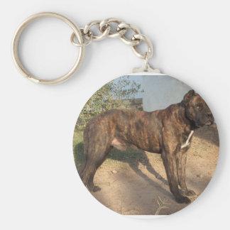 Alano Español Dog Basic Round Button Keychain