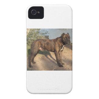 Alano Español Dog Case-Mate iPhone 4 Cases