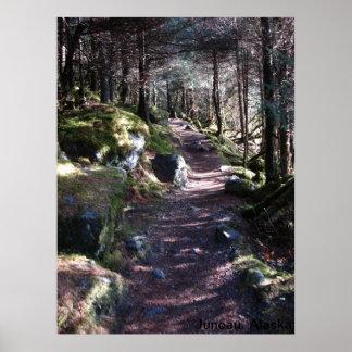Alaska Forest Trail Poster