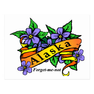Alaska Forget Me Not Postcard