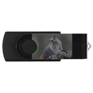 alaska marmot swivel USB 2.0 flash drive