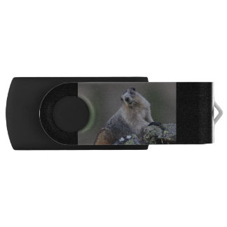 alaska marmot USB flash drive