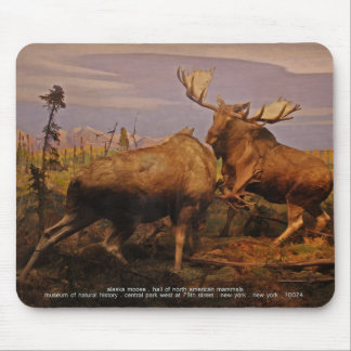 alaska moose mouse pad