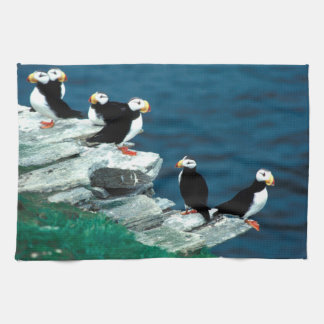 Alaska Puffins Feathered Colorful Birds Kitchen Towel