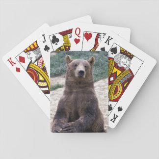 Alaska, southeast region Brown bear Ursus Poker Deck