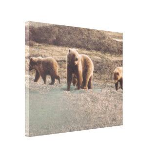 Alaska Tundra Grizzlies Photo Designed Print Stretched Canvas Print