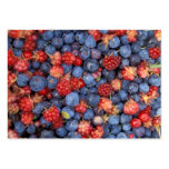 Alaska Wild Berries Fruits Pack Of Chubby Business Cards