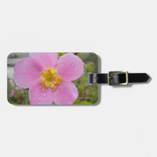 Alaska Wild Rose Luggage Tag