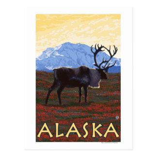 AlaskaCaribou Vintage Travel Poster Postcard