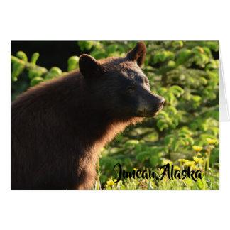 Alaskan Bear Card