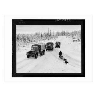 Alaskan Dogsled & Army Trucks Postcard