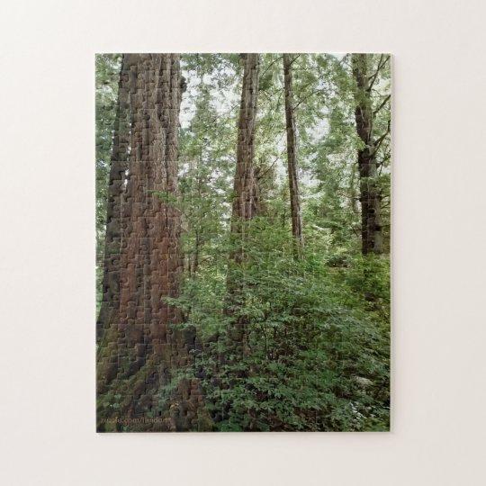 Alaskan Forest Puzzle
