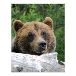 Alaskan Grizzly Bear, The Kodiak Personalized Letterhead