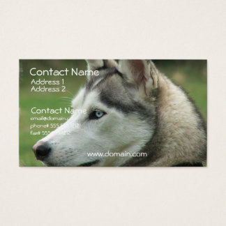 Alaskan Husky Business Card
