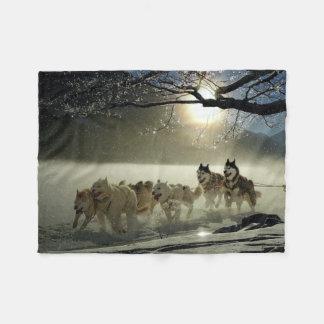 Alaskan Husky Dog Sled Race Fleece Blanket