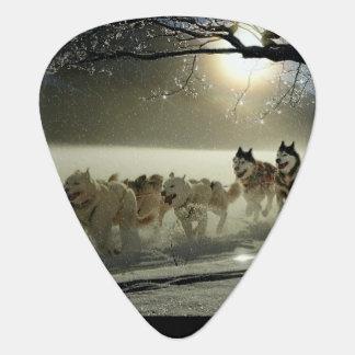 Alaskan Husky Dog Sled Race Guitar Pick