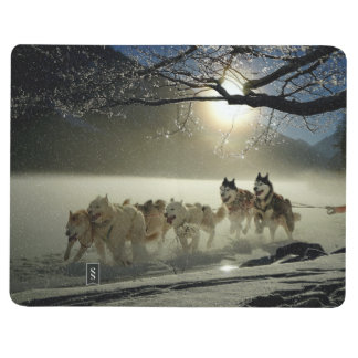 Alaskan Husky Dog Sled Race Journal
