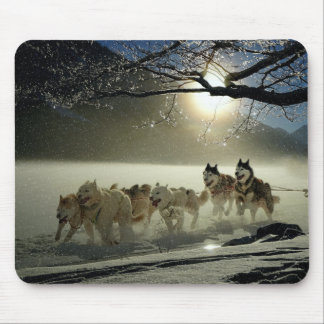 Alaskan Husky Dog Sled Race Mouse Pad