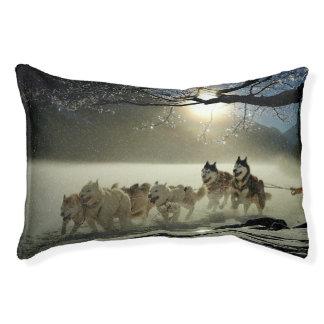 Alaskan Husky Dog Sled Race Pet Bed