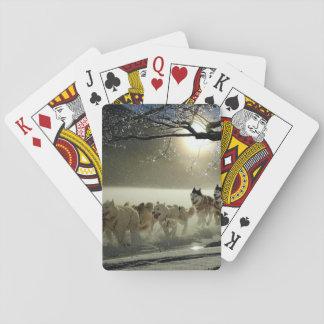 Alaskan Husky Dog Sled Race Playing Cards