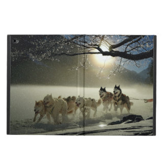 Alaskan Husky Dog Sled Race Powis iPad Air 2 Case
