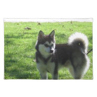 Alaskan Klee Kai Dog Placemats