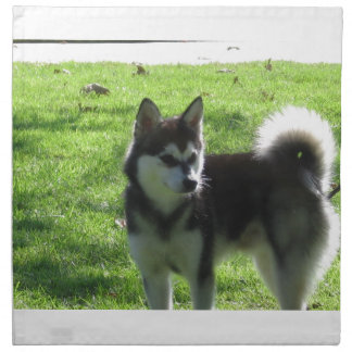Alaskan Klee Kai Dog Printed Napkins