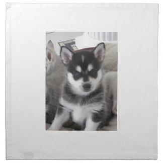 Alaskan Klee Kai Puppy Dog Cloth Napkin