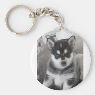 Alaskan Klee Kai Puppy Dog Keychain