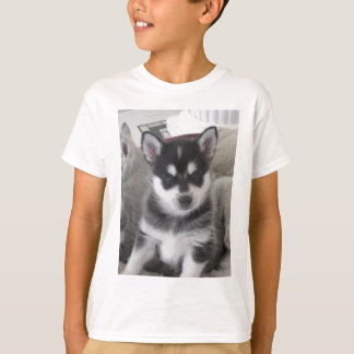 Alaskan Klee Kai Puppy Dog T-Shirt