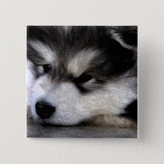 Alaskan Malamute 2 Inch Square Button