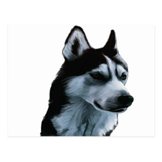 Alaskan Malamute Artwork Postcard