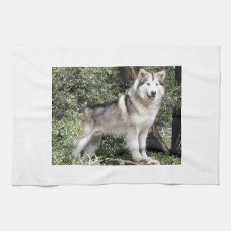 Alaskan Malamute Dog Kitchen Towel