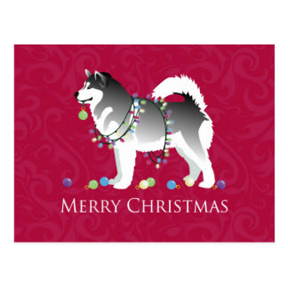 Alaskan Malamute Dog Merry Christmas Design Postcard