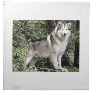 Alaskan Malamute Dog Napkins