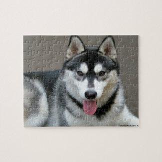 Alaskan Malamute Dog Photograph Jigsaw Puzzle