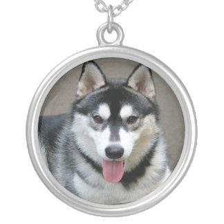 Alaskan Malamute Dog Photograph Round Pendant Necklace