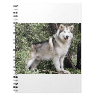 Alaskan Malamute Dog Spiral Notebook