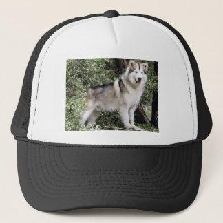 Alaskan Malamute Dog Trucker Hat