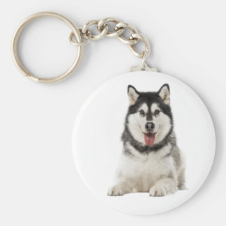 Alaskan Malamute Gray And Black Puppy Dog Basic Round Button Keychain