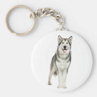 Alaskan Malamute Gray And Black Puppy Dog Basic Round Button Keychain