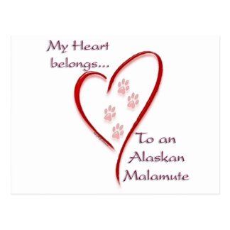 Alaskan Malamute Heart Belongs Postcard