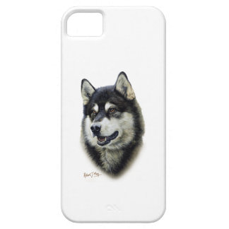 Alaskan Malamute iPhone 5 Cases