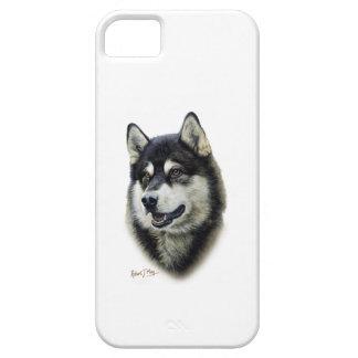 Alaskan Malamute iPhone 5 Cover